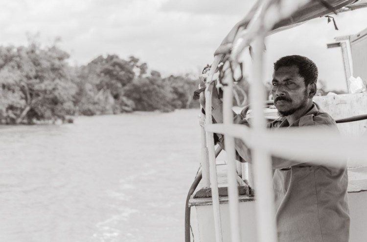 In the Sundarban